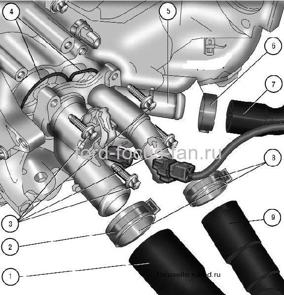 схема по демонтажу термостата форд фокус 2