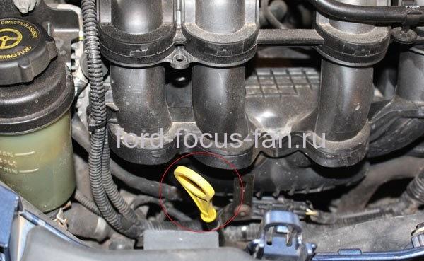 Проверка уровня моторного масла форд фокус 2 1.6л